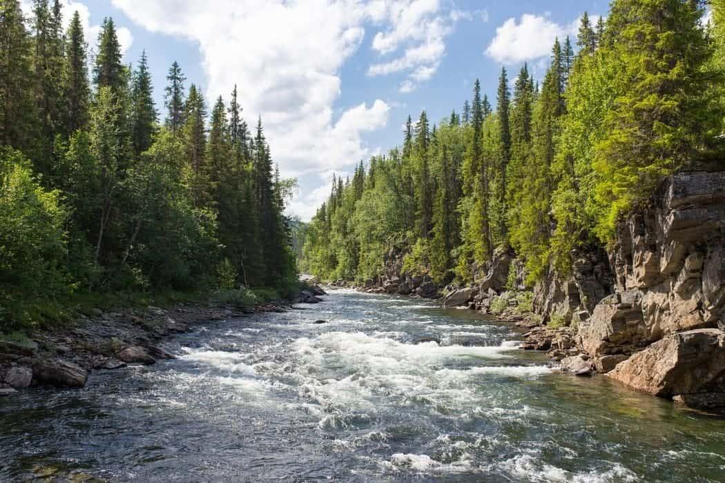 Natuur, wildkamperen in Zweden