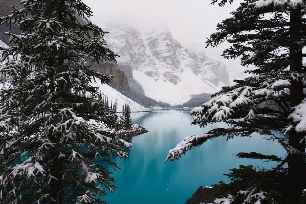 canada single vakantie